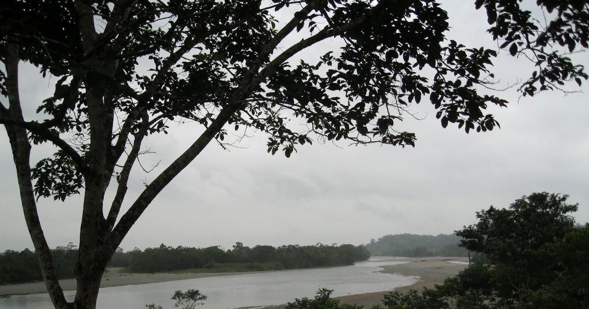 Resguardo Urada Jiguamiandó prohibe la extracción de madera y la minería con retroexcavadora - río