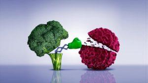 Conozca los alimentos que previenen el cáncer - 0949283_xl-300x169