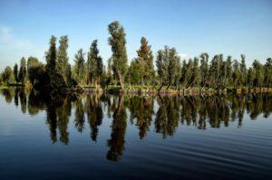 Pescadores luchan por salvar la zona lacustre de Xochimilco, en Ciudad de México - 1737790c2a0778adbc9168607760c9afd50d8500-300x199
