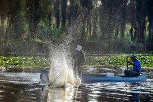 Pescadores luchan por salvar la zona lacustre de Xochimilco, en Ciudad de México - 3da51eaf5c7b2516a1c10675b2c8a4bac9d64337-300x200