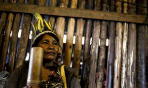Amenazados de expulsión, indígenas resisten en reserva de Sao Paulo - 5dae59ec8daf5e416ae7d316545964660bf24b0f-300x179
