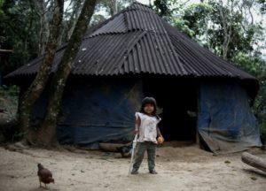 Amenazados de expulsión, indígenas resisten en reserva de Sao Paulo - 65d335cdd53ec6e8e5cf49fc4802ddd4dbc5be30-300x216