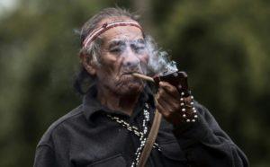 Amenazados de expulsión, indígenas resisten en reserva de Sao Paulo - fcbd4b10a82eef0f3d0ed705c0ac5fc17d0f755f-300x186