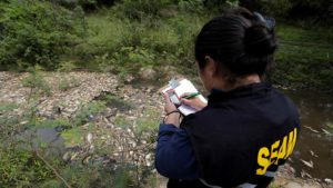 Impactante: Miles de peces muertos aparecen en un río en Paraguay - 01555933-300x169